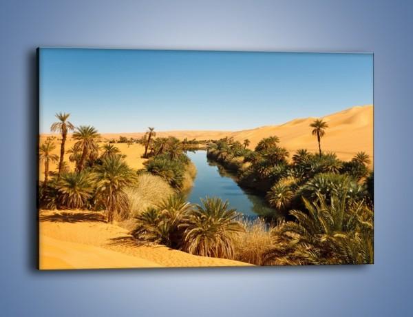 Obraz na płótnie – Woda woda na pustyni – jednoczęściowy prostokątny poziomy KN1294A