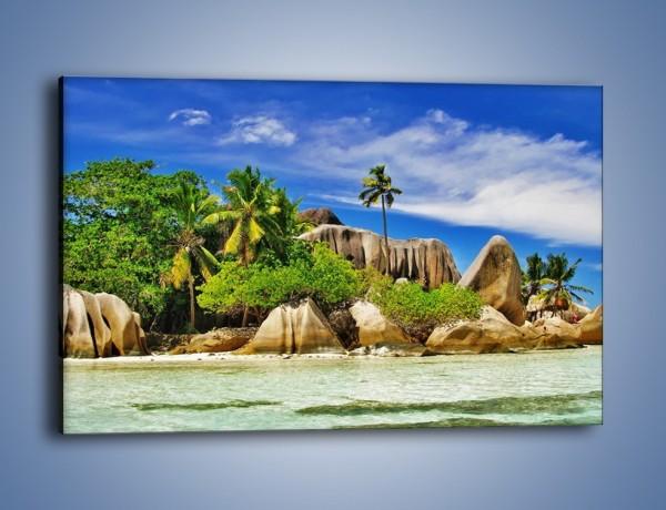 Obraz na płótnie – Tropiki i ich wysokości – jednoczęściowy prostokątny poziomy KN1306A