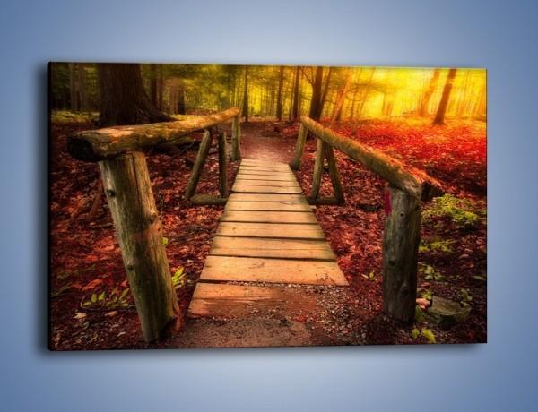 Obraz na płótnie – Krótkie przejście przez las – jednoczęściowy prostokątny poziomy KN1330A