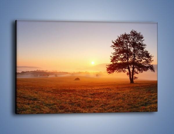 Obraz na płótnie – Krajobraz utopiony we mgle – jednoczęściowy prostokątny poziomy KN1331A