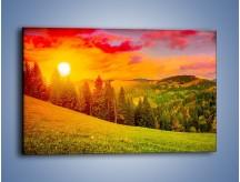 Obraz na płótnie – Zachód słońca za drzewami – jednoczęściowy prostokątny poziomy KN150