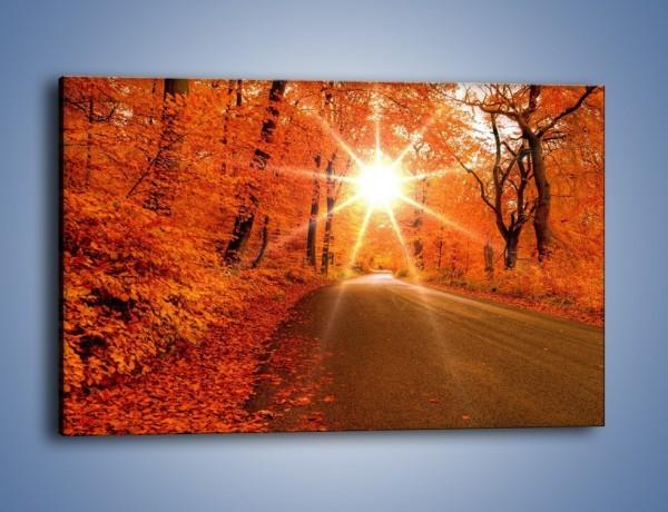 Obraz na płótnie – Droga pełna słońca – jednoczęściowy prostokątny poziomy KN160