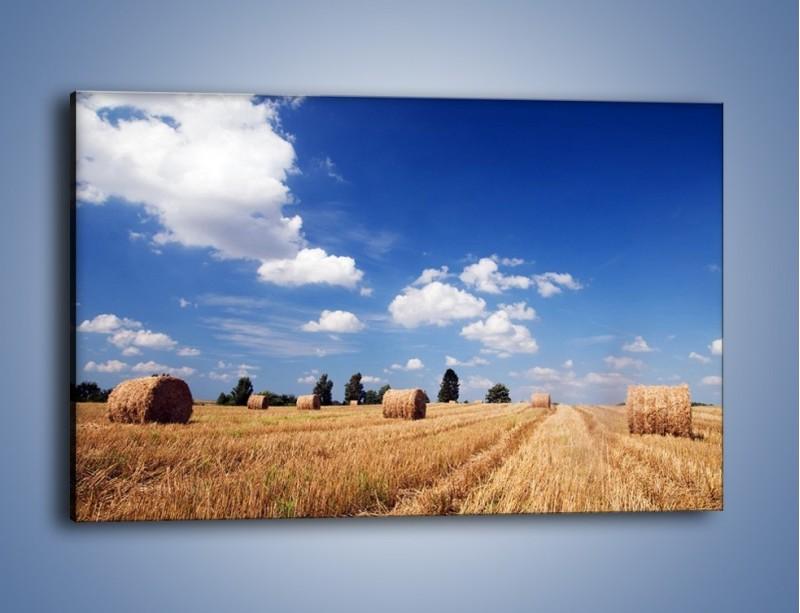 Obraz na płótnie – Belki na polskiej wsi – jednoczęściowy prostokątny poziomy KN190