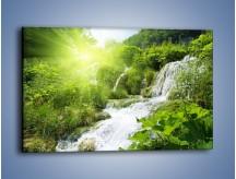 Obraz na płótnie – Wodospad ukryty w zieleni – jednoczęściowy prostokątny poziomy KN228
