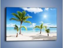 Obraz na płótnie – Palmy na pustej plaży – jednoczęściowy prostokątny poziomy KN245