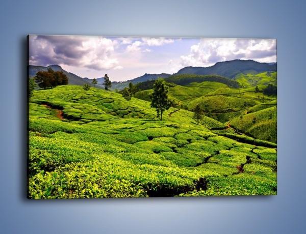 Obraz na płótnie – Góry całe w zieleni – jednoczęściowy prostokątny poziomy KN246