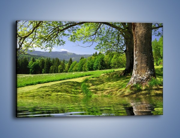 W Mega Obraz na płótnie – Krajobraz pełen wiosennego spokoju GV66