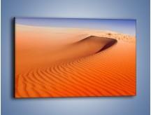 Obraz na płótnie – Pustynny żar – jednoczęściowy prostokątny poziomy KN305