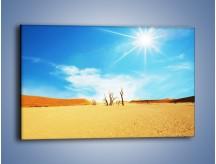 Obraz na płótnie – Błękit nieba i słońce w ziemi – jednoczęściowy prostokątny poziomy KN331
