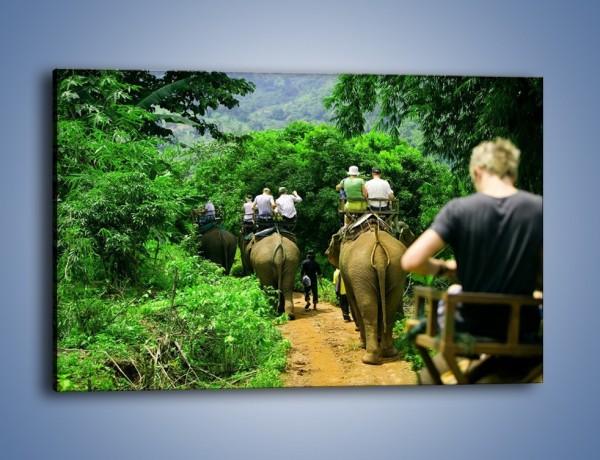 Obraz na płótnie – Podróż na słoniu – jednoczęściowy prostokątny poziomy KN414
