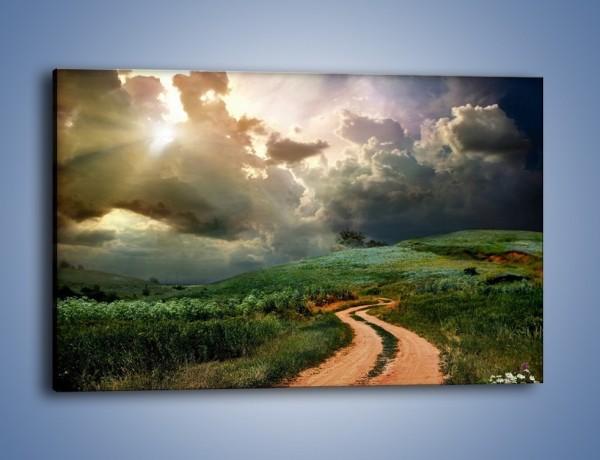Obraz na płótnie – Krętą ścieżką przez łąkę – jednoczęściowy prostokątny poziomy KN468
