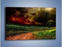 Obraz na płótnie – Groźne chmury nad łąką – jednoczęściowy prostokątny poziomy KN476
