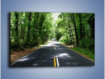 Obraz na płótnie – Droga bez powrotu – jednoczęściowy prostokątny poziomy KN481