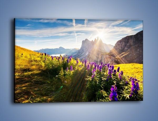Obraz na płótnie – Góry w poświacie słońca – jednoczęściowy prostokątny poziomy KN502