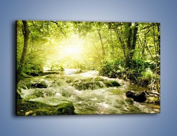 Obraz na płótnie – Wzburzony potok leśny – jednoczęściowy prostokątny poziomy KN508