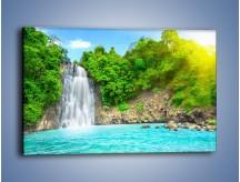 Obraz na płótnie – Kwiat woda i wodospad – jednoczęściowy prostokątny poziomy KN520