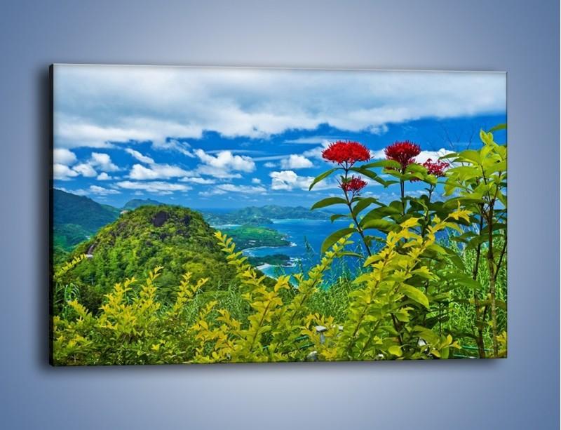 Obraz na płótnie – Bordowe kwiaty w górskim krajobrazie – jednoczęściowy prostokątny poziomy KN561