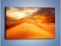 Obraz na płótnie – Spokojny oddech w pustynnym klimacie – jednoczęściowy prostokątny poziomy KN567