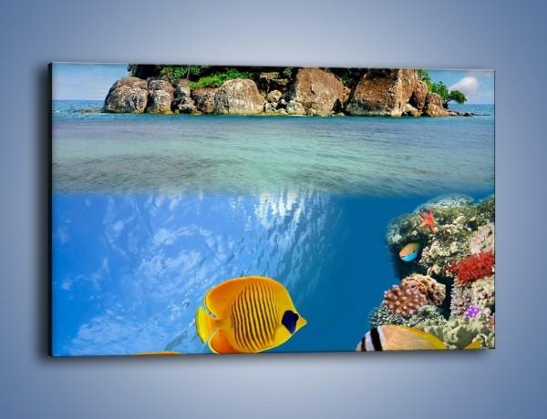 Obraz na płótnie – Podwodny świat na wyspie – jednoczęściowy prostokątny poziomy KN586