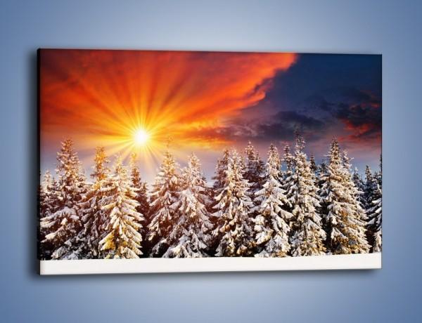 Obraz na płótnie – Choinki w środku zimy – jednoczęściowy prostokątny poziomy KN682