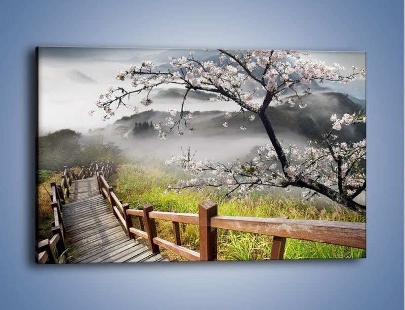 Obraz na płótnie – Drzewo wiśni i kręte schody – jednoczęściowy prostokątny poziomy KN698