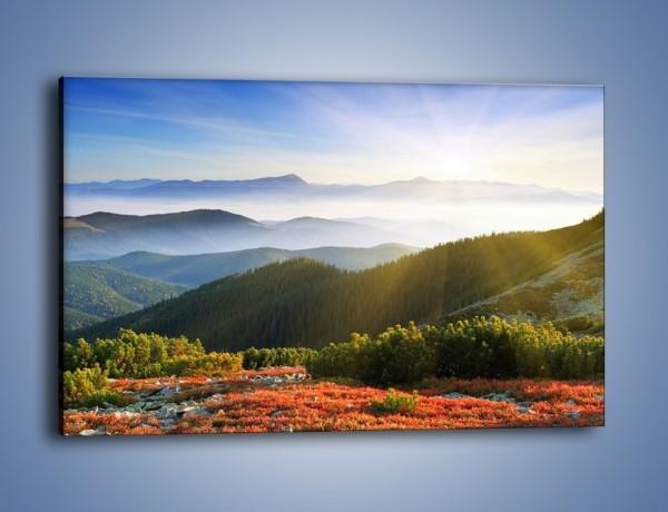 Obraz na płótnie – Widok na górskie doliny – jednoczęściowy prostokątny poziomy KN719