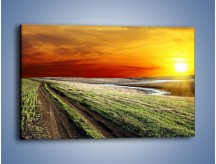Obraz na płótnie – Droga polna w mroźny dzień – jednoczęściowy prostokątny poziomy KN726