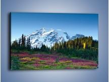 Obraz na płótnie – Lawenda góry i śnieg – jednoczęściowy prostokątny poziomy KN733