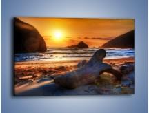 Obraz na płótnie – Urok plaży o zachodzie słońca – jednoczęściowy prostokątny poziomy KN757