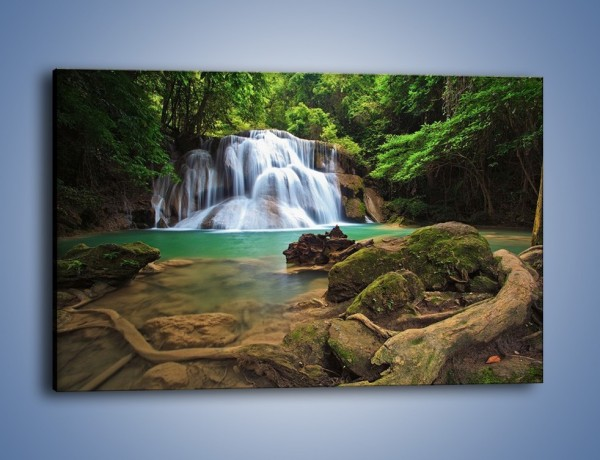 Obraz na płótnie – Drzewa schowane za wodospadem – jednoczęściowy prostokątny poziomy KN792