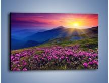 Obraz na płótnie – Spojrzenie na góry i łąkę – jednoczęściowy prostokątny poziomy KN793