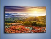 Obraz na płótnie – Kolory zachodzącego słońca na ziemi – jednoczęściowy prostokątny poziomy KN796