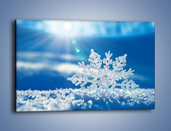 Obraz na płótnie – Diamentowa śnieżynka – jednoczęściowy prostokątny poziomy KN808