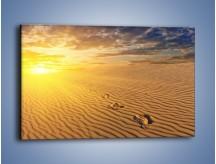 Obraz na płótnie – Leniwym krokiem w stronę słońca – jednoczęściowy prostokątny poziomy KN843