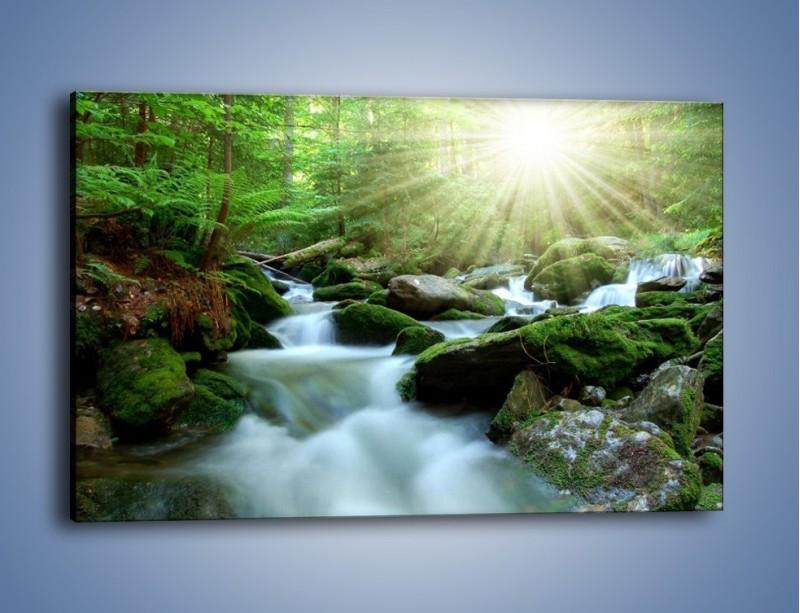 Obraz na płótnie – Silny potok w środku lasu – jednoczęściowy prostokątny poziomy KN861