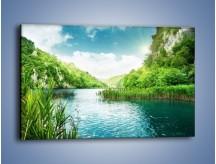 Obraz na płótnie – Wodnym śladem wśród zieleni – jednoczęściowy prostokątny poziomy KN884