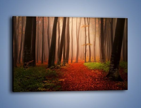 Obraz na płótnie – Las pełen tajemnic – jednoczęściowy prostokątny poziomy KN909