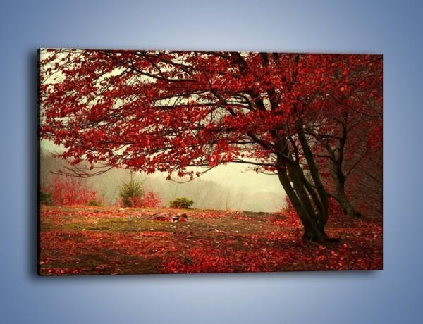 Obraz na płótnie – Spadające liście z drzew – jednoczęściowy prostokątny poziomy KN910