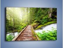 Obraz na płótnie – Bezpieczna droga przez las – jednoczęściowy prostokątny poziomy KN922