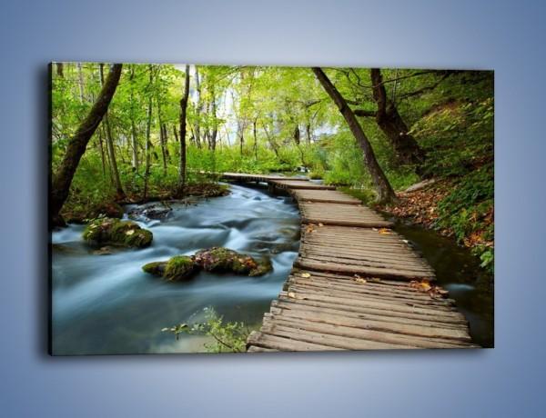 Obraz na płótnie – Mostem do światła – jednoczęściowy prostokątny poziomy KN923