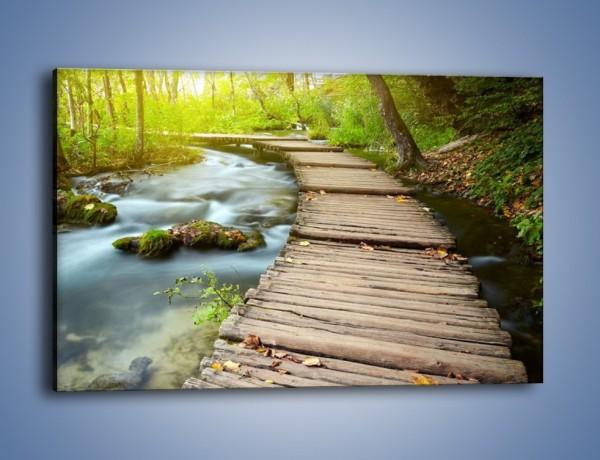 Obraz na płótnie – Listki na drewnianym mostku – jednoczęściowy prostokątny poziomy KN925