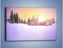 Obraz na płótnie – Choinki zatopione w śniegu – jednoczęściowy prostokątny poziomy KN940