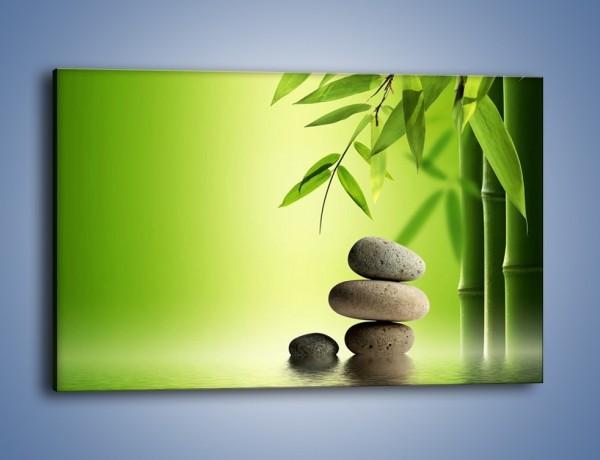 Obraz na płótnie – Kamień i roślinka – jednoczęściowy prostokątny poziomy KN954