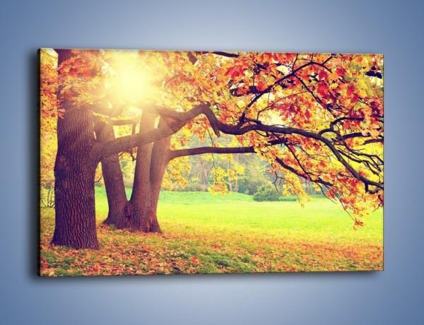Obraz na płótnie – Jesienią w parku też jest pięknie – jednoczęściowy prostokątny poziomy KN967