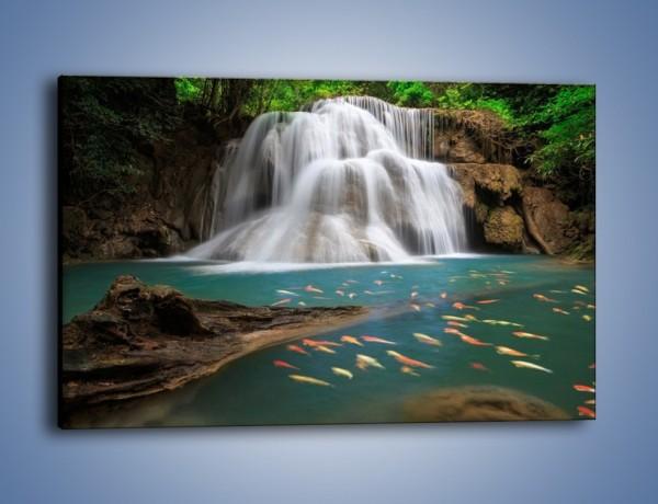 Obraz na płótnie – Wodospad i kolorowe rybki – jednoczęściowy prostokątny poziomy KN994