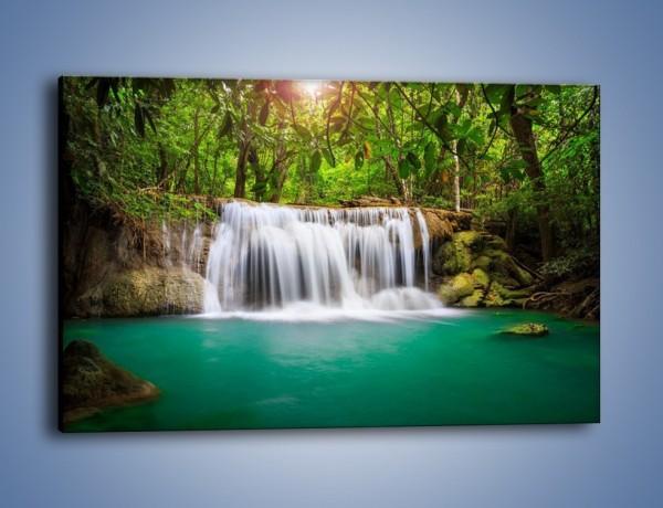 Obraz na płótnie – Kąpiel w środku lasu – jednoczęściowy prostokątny poziomy KN995