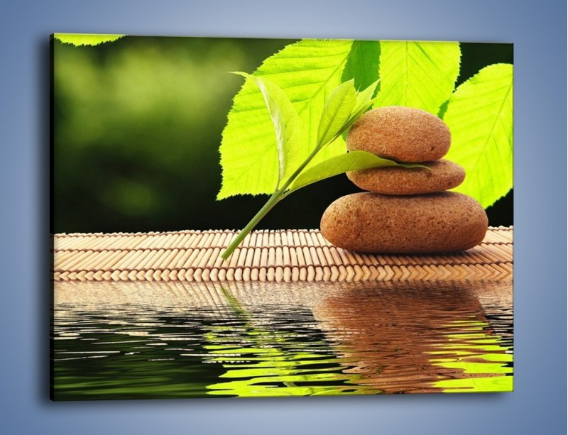 Obraz na płótnie – Liście odbite w lustrze wodnym – jednoczęściowy prostokątny poziomy O149