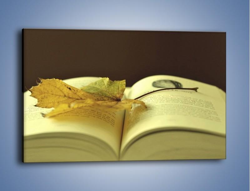 Obraz na płótnie – Liść na ciekawej powieści – jednoczęściowy prostokątny poziomy O163