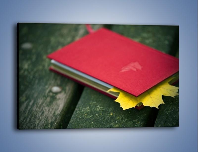 Obraz na płótnie – Książka z jesiennym akcentem – jednoczęściowy prostokątny poziomy O167