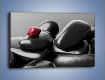 Obraz na płótnie – Czerwień wśród czarności – jednoczęściowy prostokątny poziomy O212